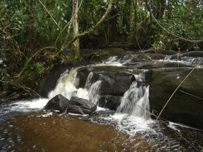 Streams and rivers flow abundantly in this region of heavy rains.